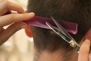 Professionsl shears small